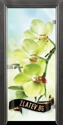 Стъклена интериорна врата Print G 13-3 с каса Сив кестен
