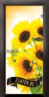 Стъклена интериорна врата Print G 13 4 X