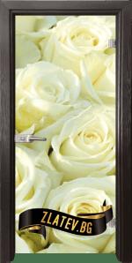 Стъклена интериорна врата Print G 13 6 Z