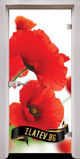 Стъклена интериорна врата Print G 13 8 D